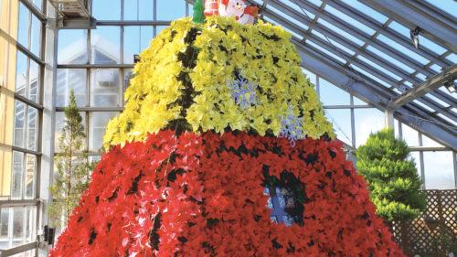 〈潟上市〉ポインセチアタワー ▷毎年恒例のタワーが今年も登場