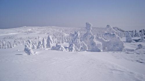〈鹿角市〉第24回 八幡平樹氷ツアー ▷八幡平の幽玄な樹氷群を堪能