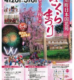 〈井川町〉日本国花苑さくらまつり ▷ステージ企画や花火の打ち上げも