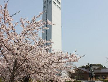 〈潟上市〉天王グリーンランド▷桜が咲き誇る園内を散策しよう