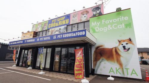 PET SHOP Coo&RIKU 秋田店 ▷犬猫専門の大型ショップOPEN