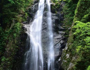 〈仙北市〉抱返り渓谷▷若葉が輝く新緑のシーズンも魅力