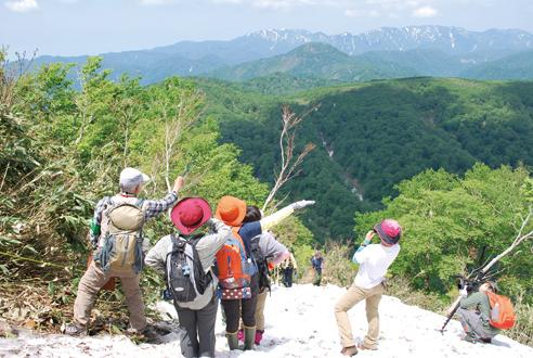 〈八峰町〉世界自然遺産白神山地 「二ッ森」自然観察会 ▷広大な白神山地のブナの森を一望
