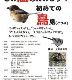 〈藤里町〉この鳥なんのとり? 初めての鳥見▷今の季節ならではの野鳥に出会える