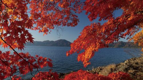 山が赤く染まる季節。紅葉スポットに出かけませんか?〈後半〉