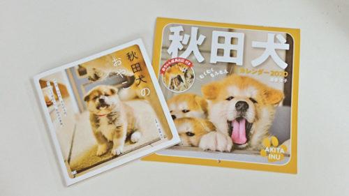 〈大館市〉「秋田犬のおやこ」写真展▷可愛い秋田犬の親子に癒やされよう