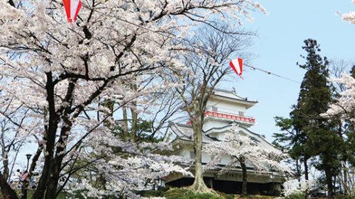 【中止】〈秋田市〉千秋公園桜まつり▷春の訪れを告げる約700本の桜
