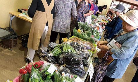 〈八郎潟町〉おもしろ市場▷売れ筋は地元農家直売の旬の野菜