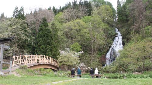 〈小坂町〉日本の滝百選 七滝▷ドライブの小休止に名瀑を眺めて心身リフレッシュ