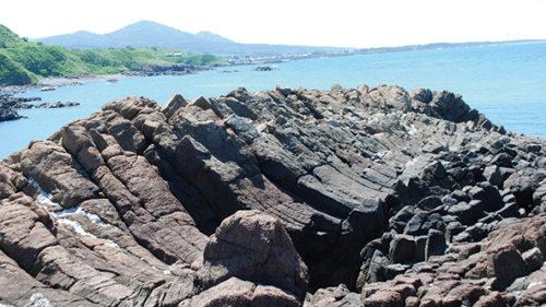 〈八峰町〉八森椿海岸柱状節理群▷さまざまな石の柱が集まった奇岩
