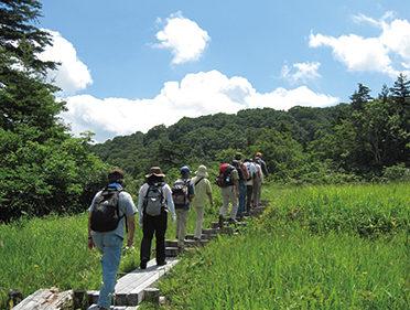 〈東成瀬村〉栗駒野鳥の森▷野鳥や昆虫、高山植物に親しめる