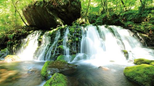 〈にかほ市〉元滝伏流水▷清涼感のある癒やしスポット