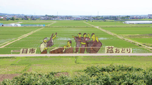 〈八郎潟町〉田んぼアート▷展望台から美しい絵柄が眺められる