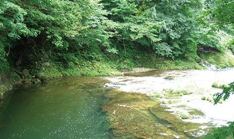 〈大館市〉長木渓流▷紅葉の季節には景観美を作り出す
