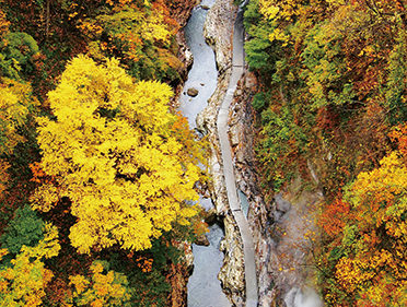 〈湯沢市〉小安峡大噴湯▷紅葉に染まる渓谷はまさに絶景