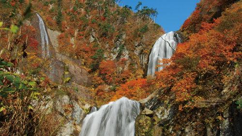 〈北秋田市〉安の滝▷紅葉の中で落下する景観は圧巻!