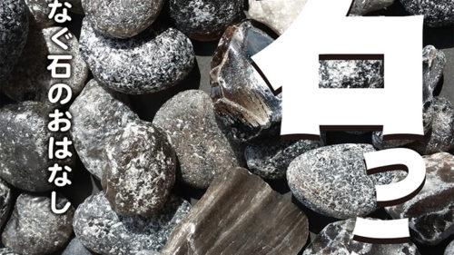 """企画展 秋田の石っころ▷身近な""""石っころ""""の物語を辿ろう"""