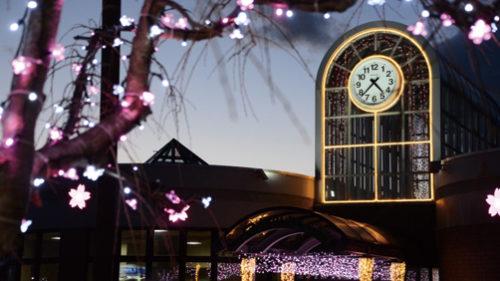 〈井川町〉JR井川さくら駅イルミネーション▷名所ならでは! 桜の花をLEDで表現