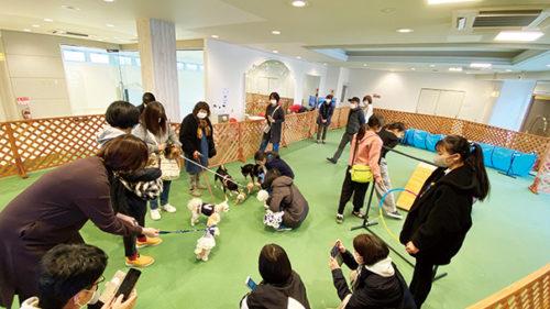 秋田ペット美容学院▷愛犬と一緒に通えるスポット