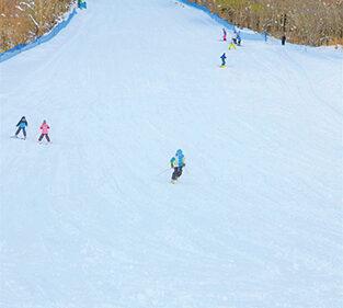 〈上小阿仁村〉上ノ岱スキー場▷夜間照明バッチリのスキー場に整備