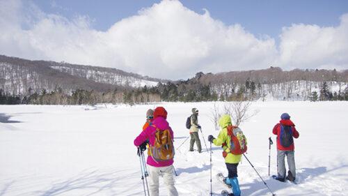 〈鹿角市〉景勝地大沼の冬を体感 大沼雪原を歩こう▷一面が真っ白になった湿原を満喫
