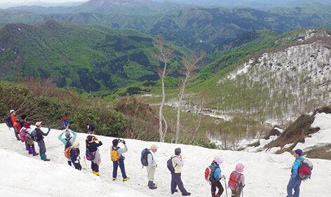 〈藤里町〉第34回白神山地山開き登山▷最も近い世界自然遺産へ一番乗り!