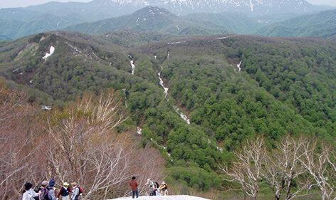 〈八峰町〉世界自然遺産白神山地二ツ森 山開き▷八峰町で登山デビューしてみよう!