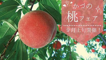 〈鹿角市〉かづの桃フェア▷昨年好評の桃祭りが今年も開催
