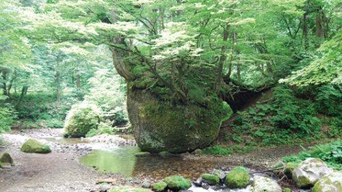 〈五城目町〉ネコバリ岩▷自然が作り出す芸術に圧倒される