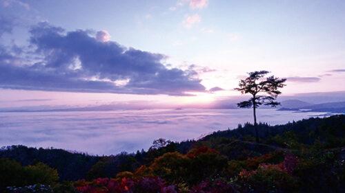 〈羽後町〉みはらし荘の雲海▷刻一刻と変化する神秘的な瞬間を